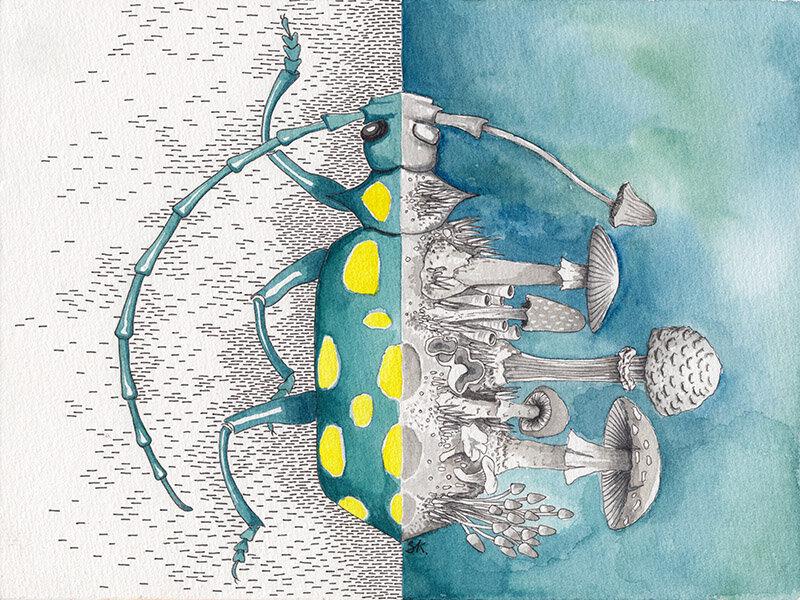 生活是什么?什么是死亡? nr。 3蓝绿色&黄色的甲虫/蘑菇,纸上水彩作品,斯蒂芬妮·基尔加斯特