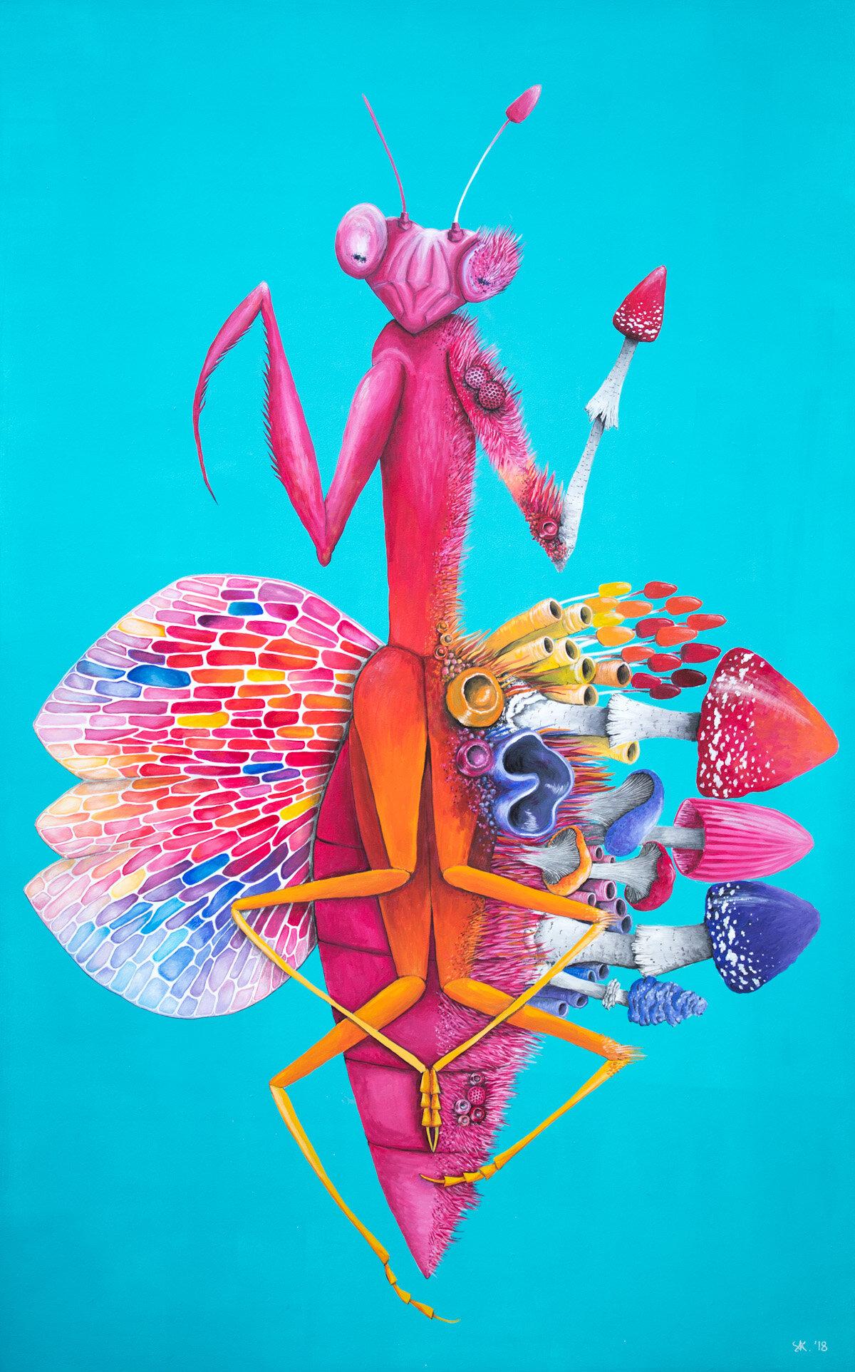 波斯波音,螳螂画,2018,斯蒂芬妮·基尔加斯特