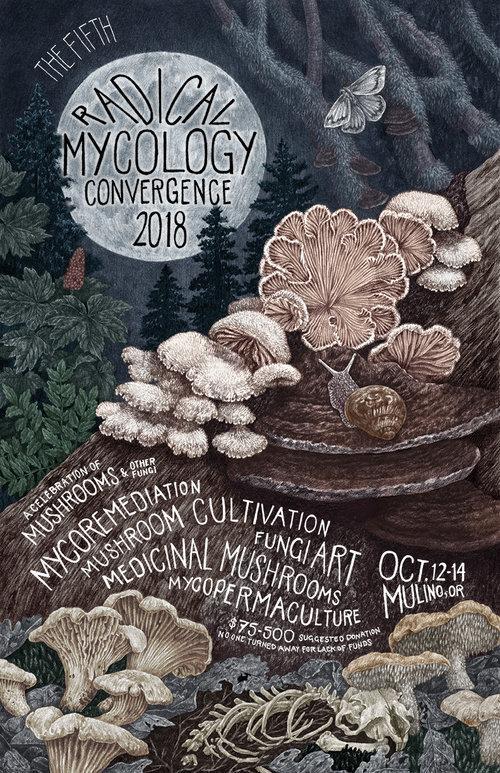 自由基真菌学收敛,2018年