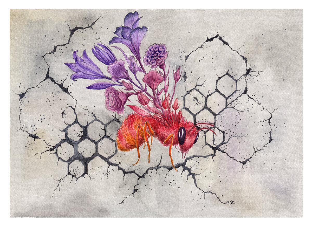 混凝土上的蜜蜂,2018,纸上水彩,斯蒂芬妮·基尔加斯特