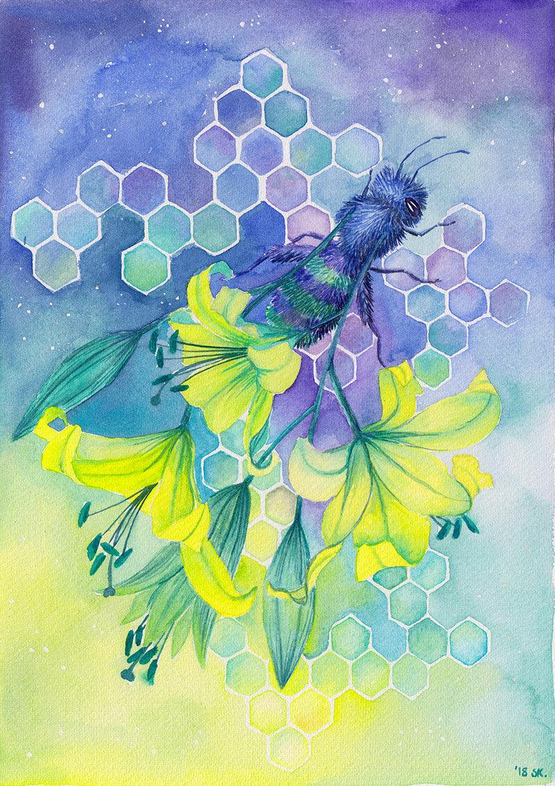 蜜蜂消失,2018年,纸上水彩,斯蒂芬妮·基尔加斯特(Stephanie Kilgast)