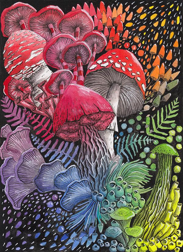 蘑菇成分#2(彩虹),水彩画,2018年,斯蒂芬妮·基尔加斯特