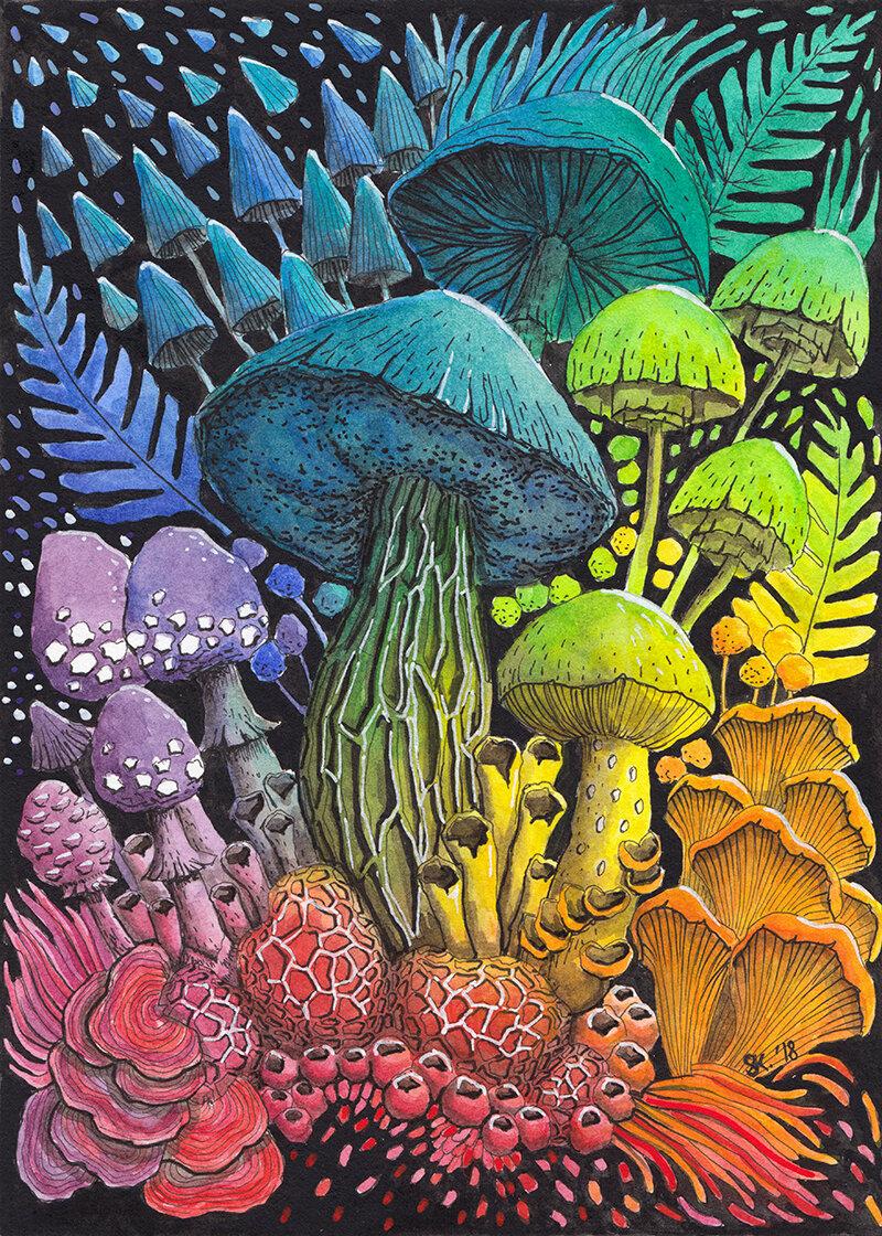 蘑菇组成#3(彩虹),水彩画,2018年,斯蒂芬妮·基尔加斯特