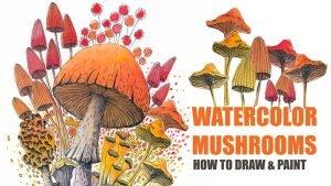 斯蒂芬妮·基尔格斯特(Stephanie Kilgast)的教程,如何用水彩和水墨画蘑菇