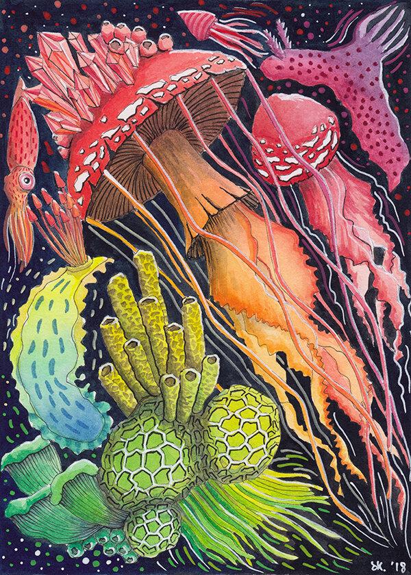 蘑菇成分#5(水母),水彩作品,2018,斯蒂芬妮·基尔加斯特