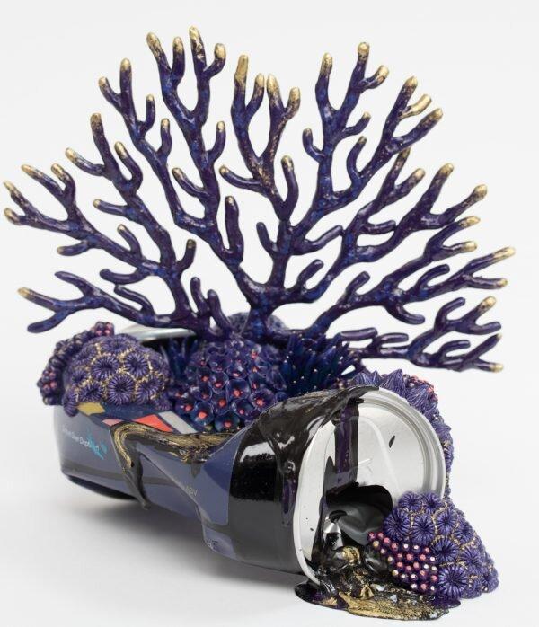 皇家珊瑚号,垃圾上的珊瑚11选5技巧,斯蒂芬妮·基尔加斯特,2019年