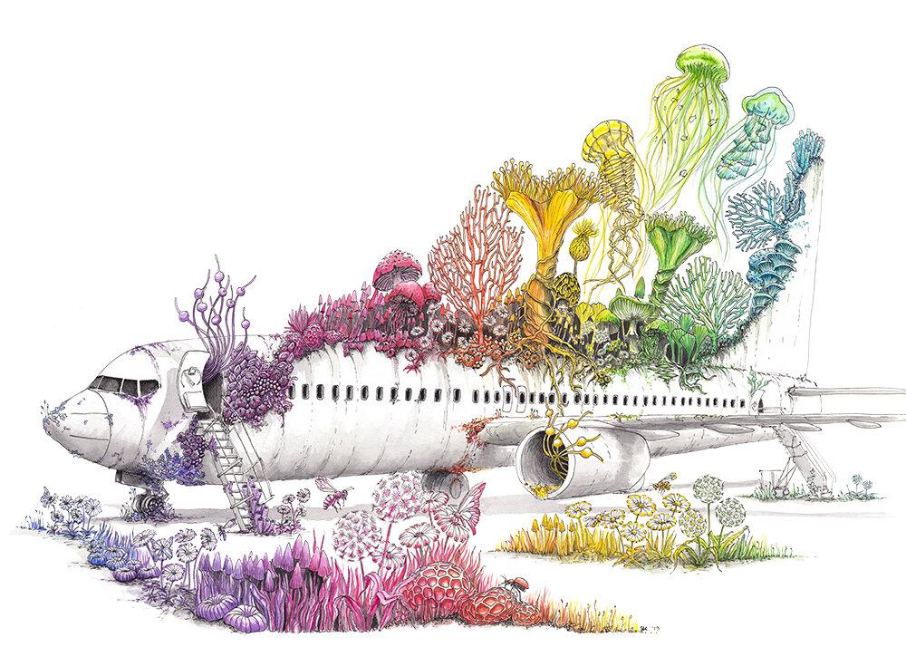 《长征》(飞机),2019年,水彩和水墨作品,斯蒂芬妮·基尔加斯特