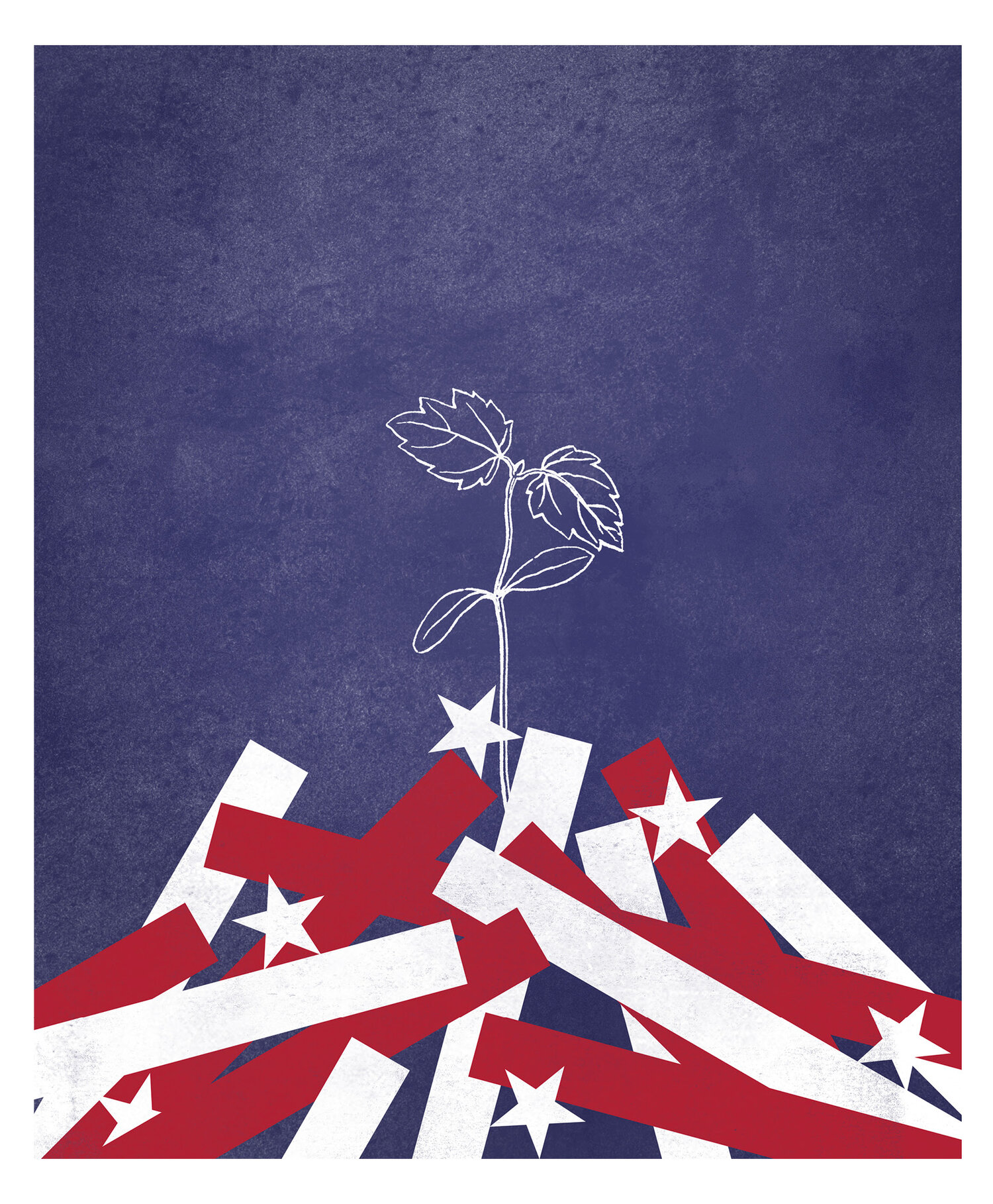 Illustration of plant growing from tattered flag.