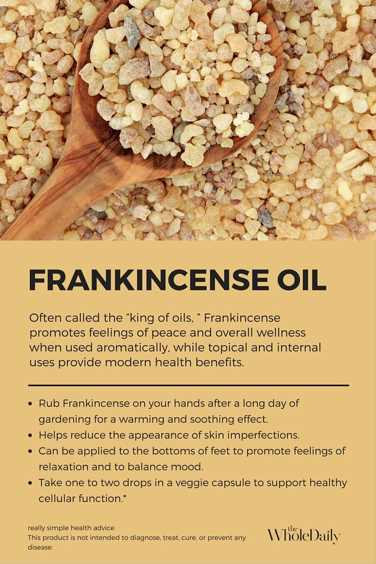 Top 8 Uses For Frankincense Essential Oil Alice Nicholls