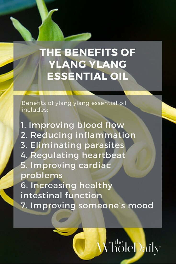 The Top 9 Uses Of Ylang Ylang Essential Oil Alice Nicholls
