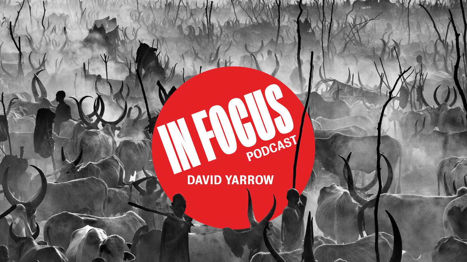 Image result for david yarrow in focus podcast
