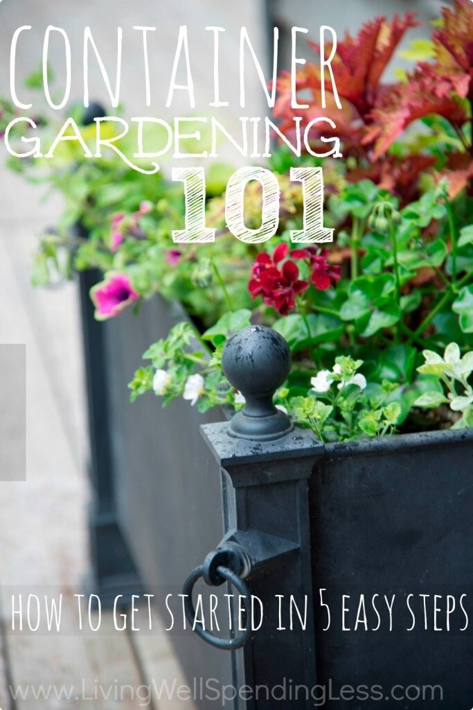 Container gardening couldn't be easier with these tips for beginners.