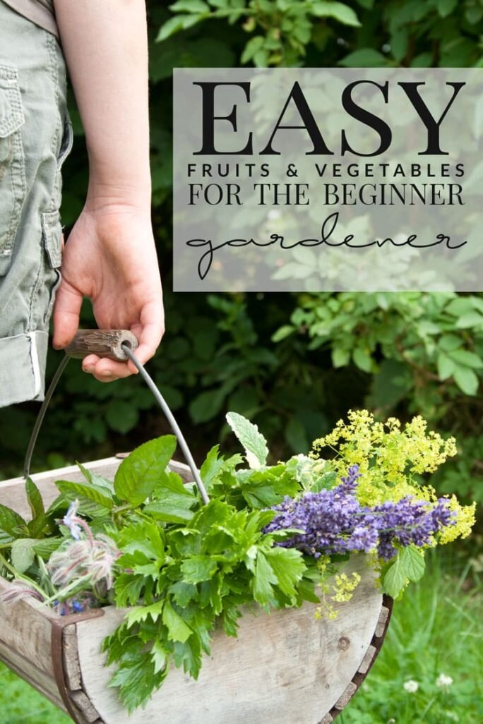 Grow these fruits and veggies if you're a beginner!
