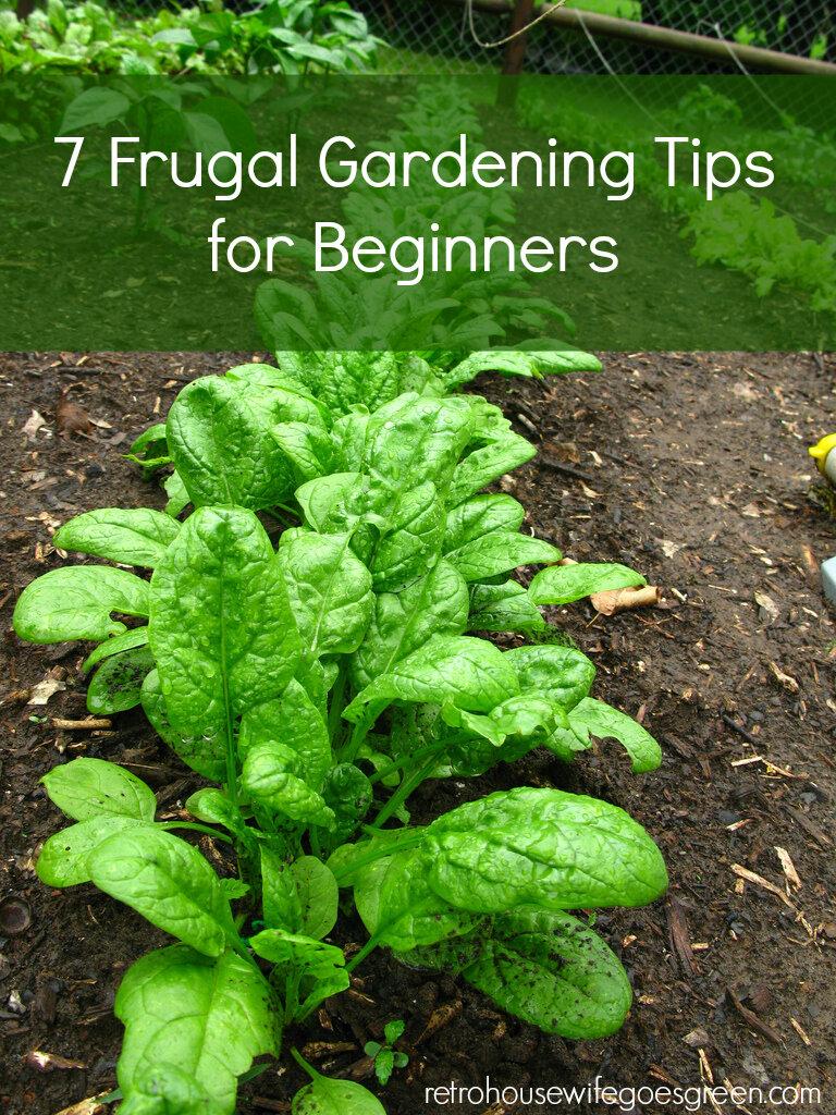 Cheap gardening hacks!