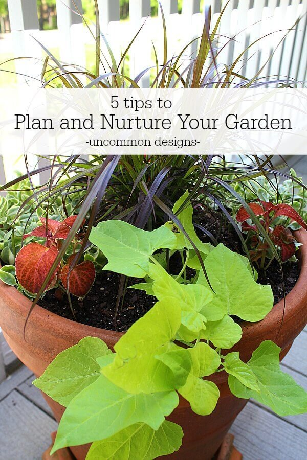 Be nice to your garden and nurture it as well!