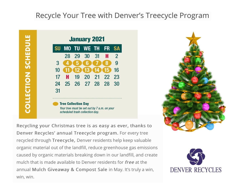 80129 Trash Pickup Christmas 2021 Denver S Treecycle Program Extreme Community Makeover