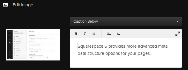 Squarespace's new captions also set the image's alt text.