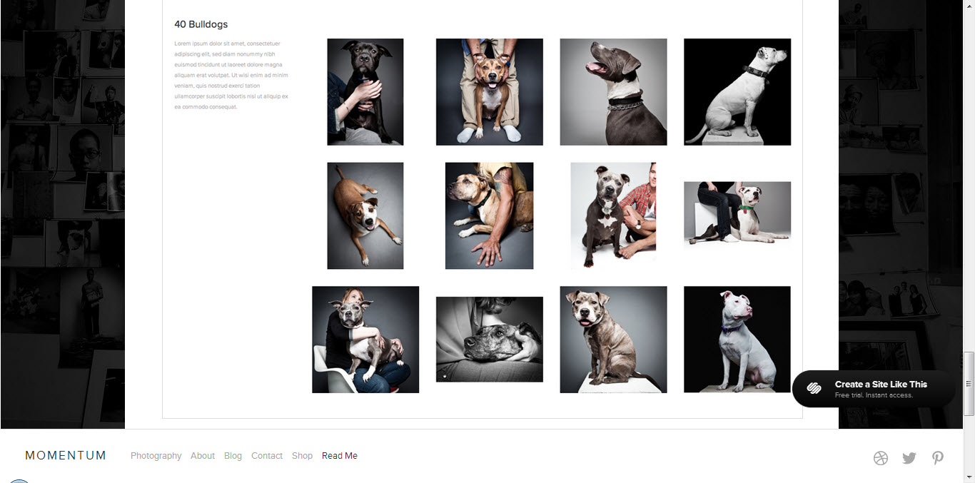 photo-gallery-template.jpg