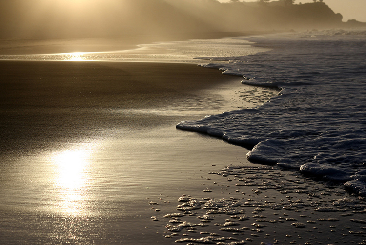 """""""that light"""" by  kylie townsend  (new plymouth, new zealand)"""
