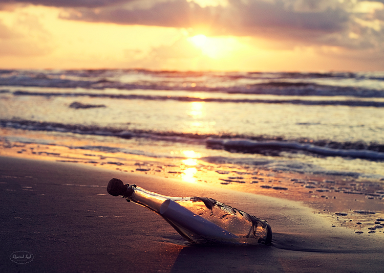 """""""message in a bottle"""" by  libertad leal  (galveston, texas, usa)"""