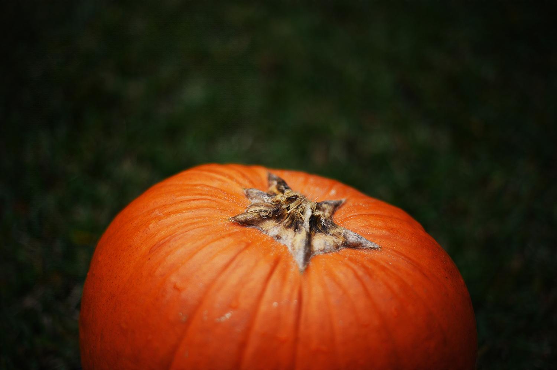 halloweenpumpkin.jpg