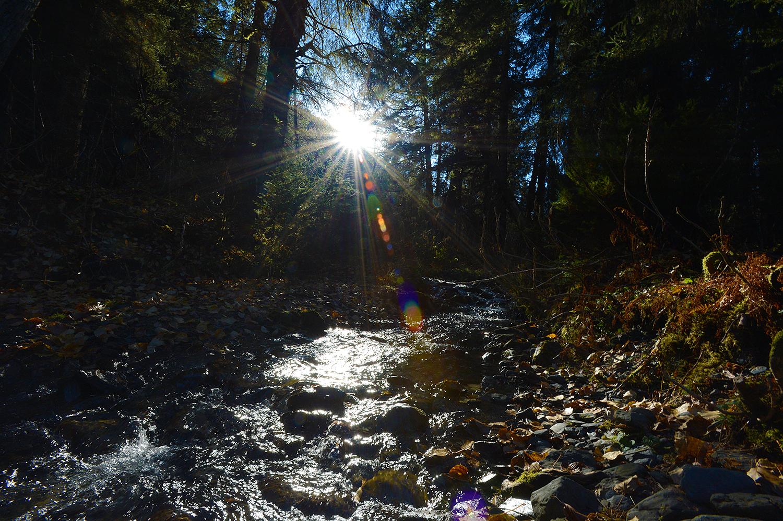 alaska, usa  :: october 2016