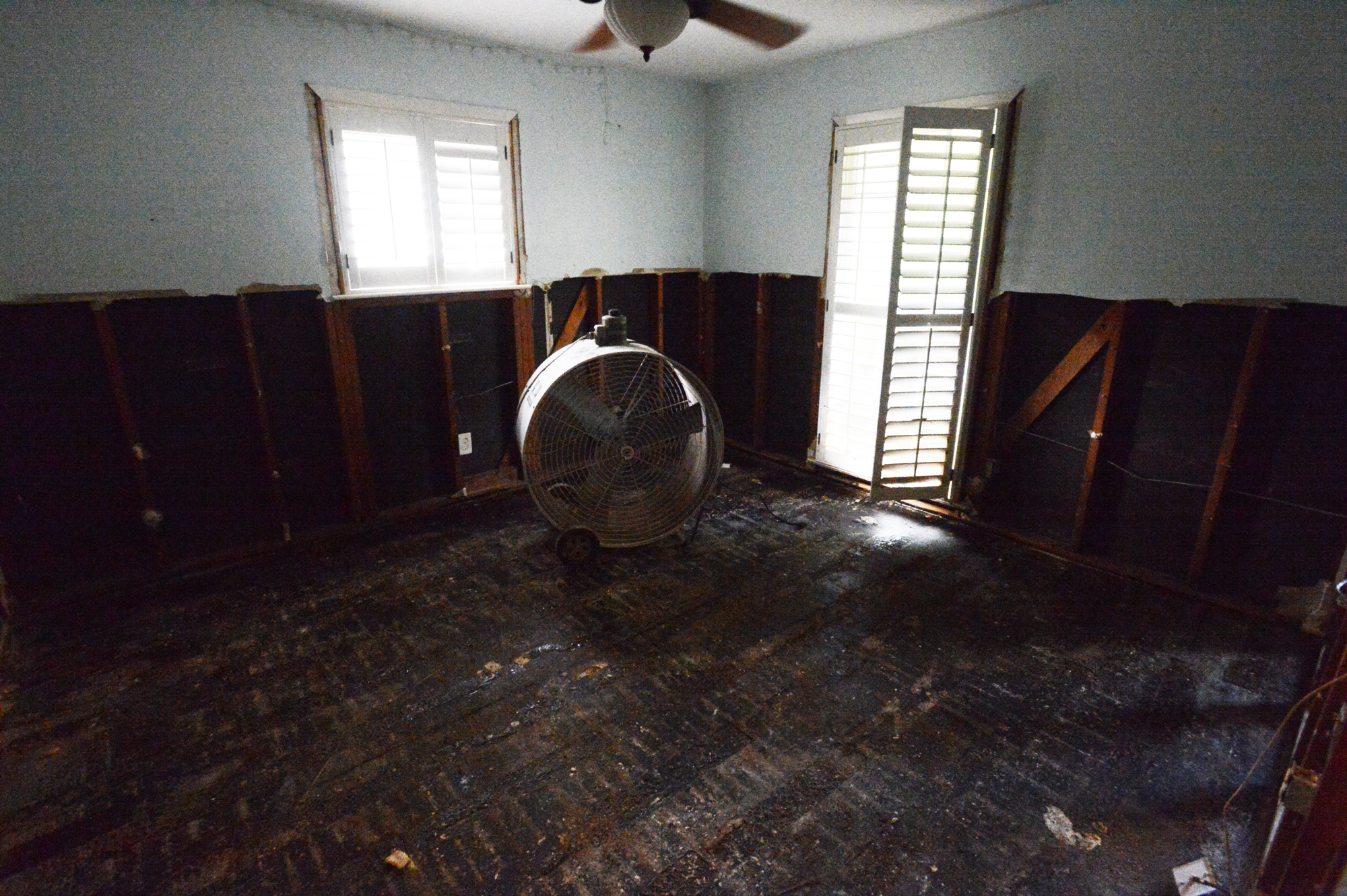 My office, aka Chookooloonks HQ.  Before we'd removed the flooring, the hardwoods had buckled almost two feet off the subfloor.  Floodwater ain't no joke.