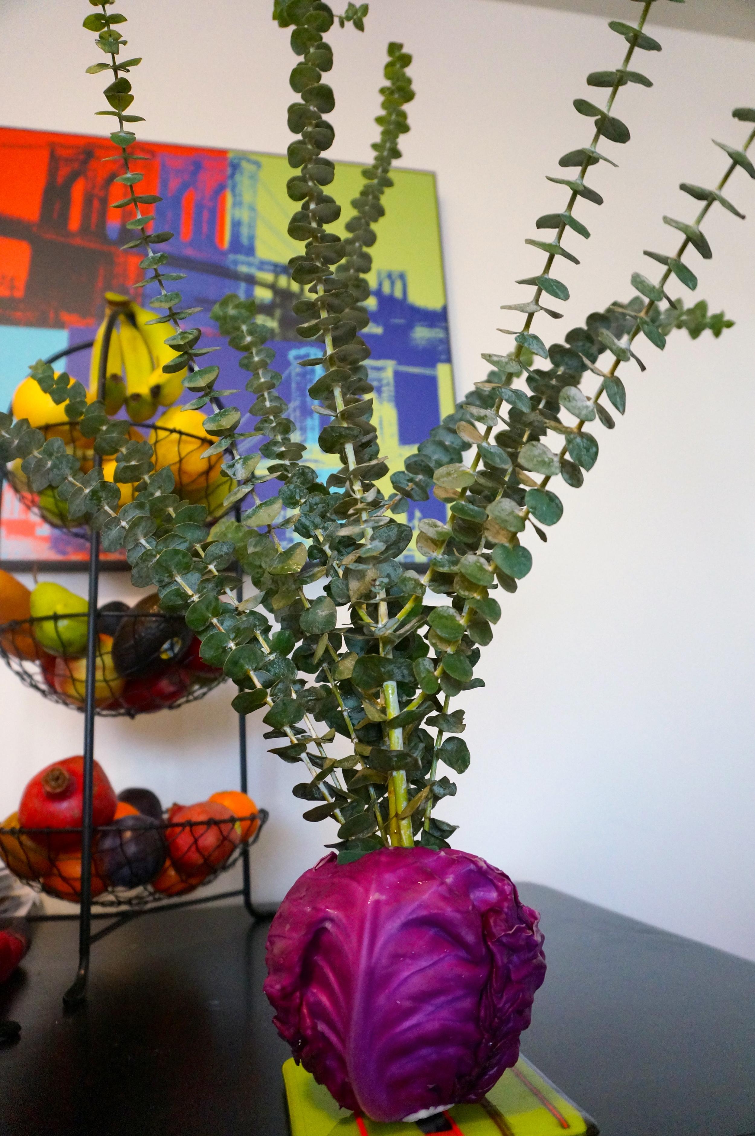 Red cabbage vase!
