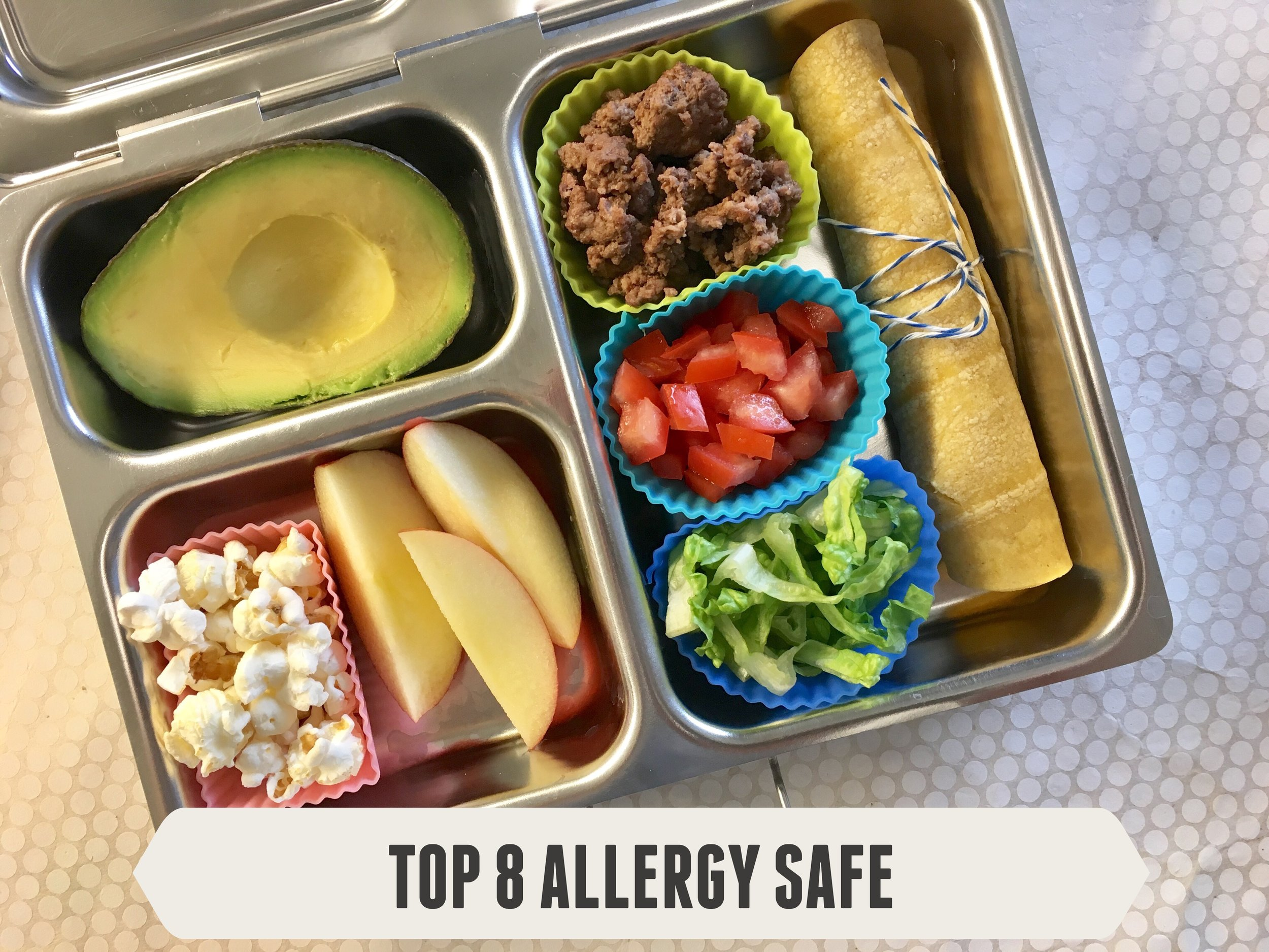 Top 8 Allergy Safe Lunch #2