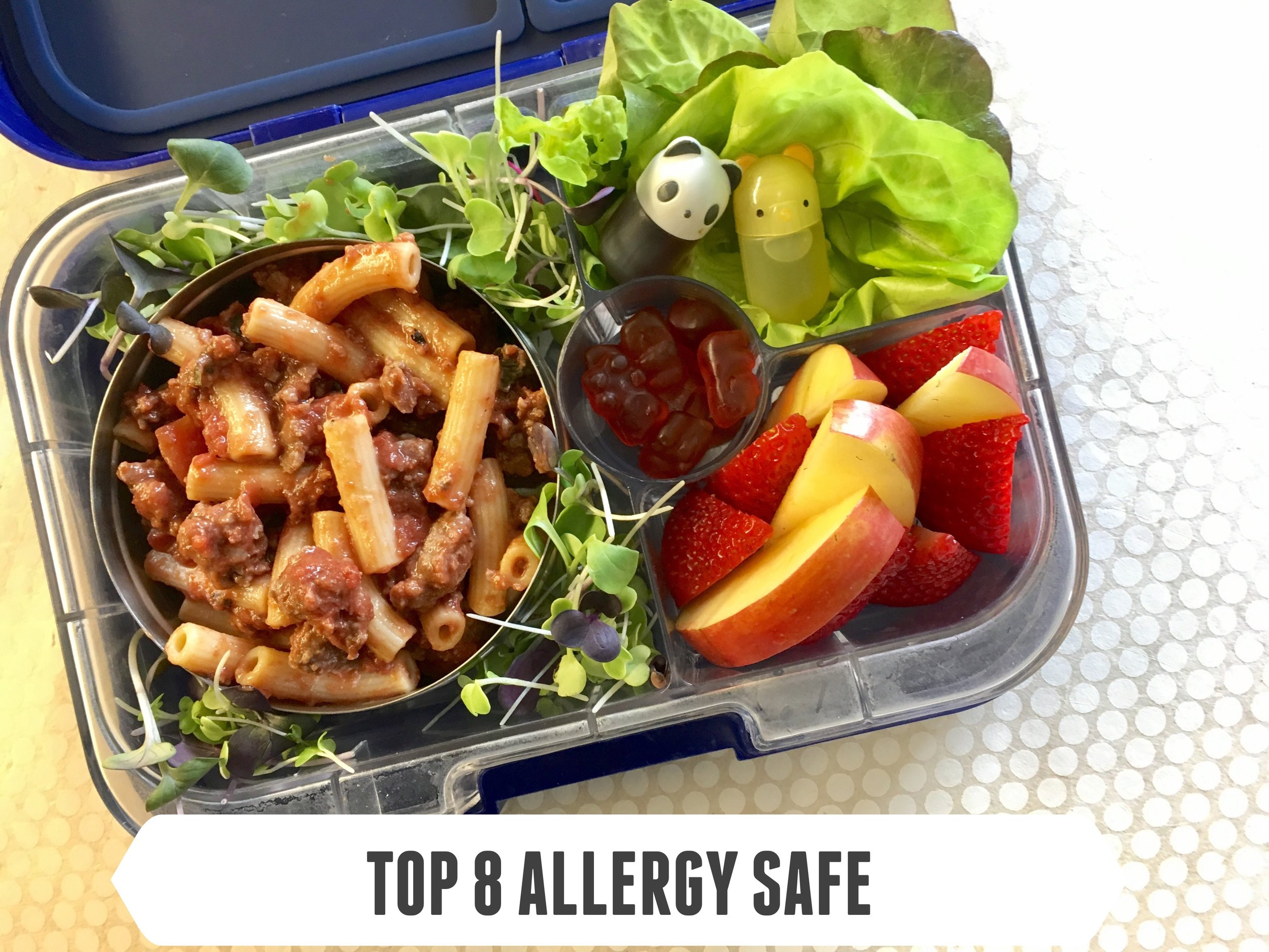 Top 8 Allergy Safe #4
