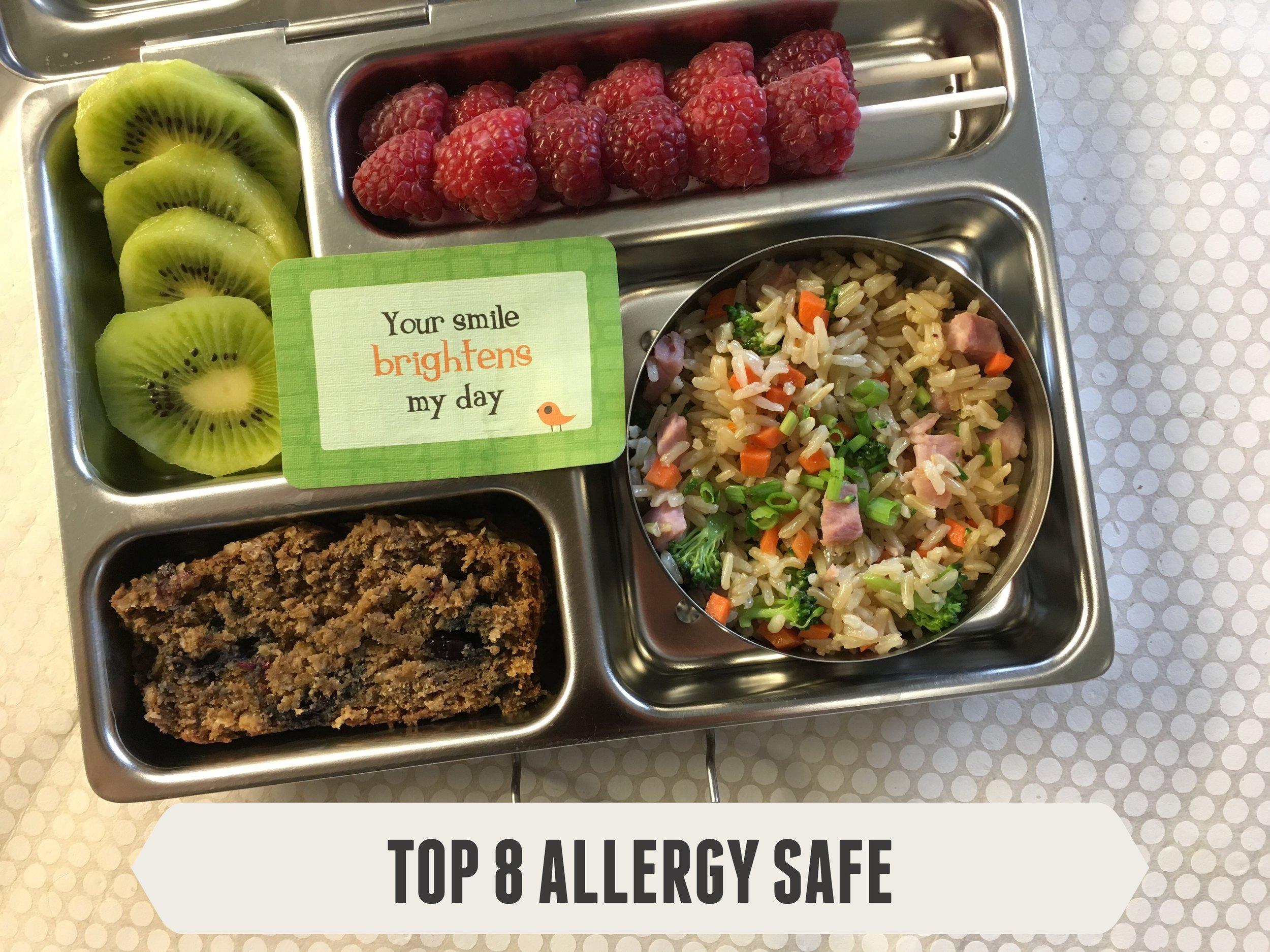 Top 8 Allergy Safe #10