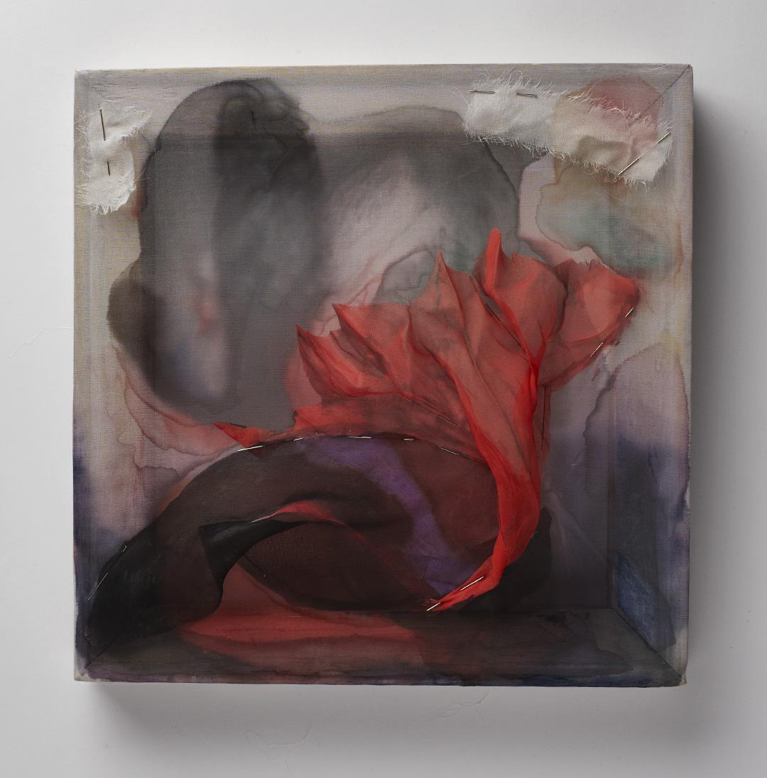 """Chasma Boreale, silk chiffon, ink, pins and wood, 12"""" x 12"""", 2014"""
