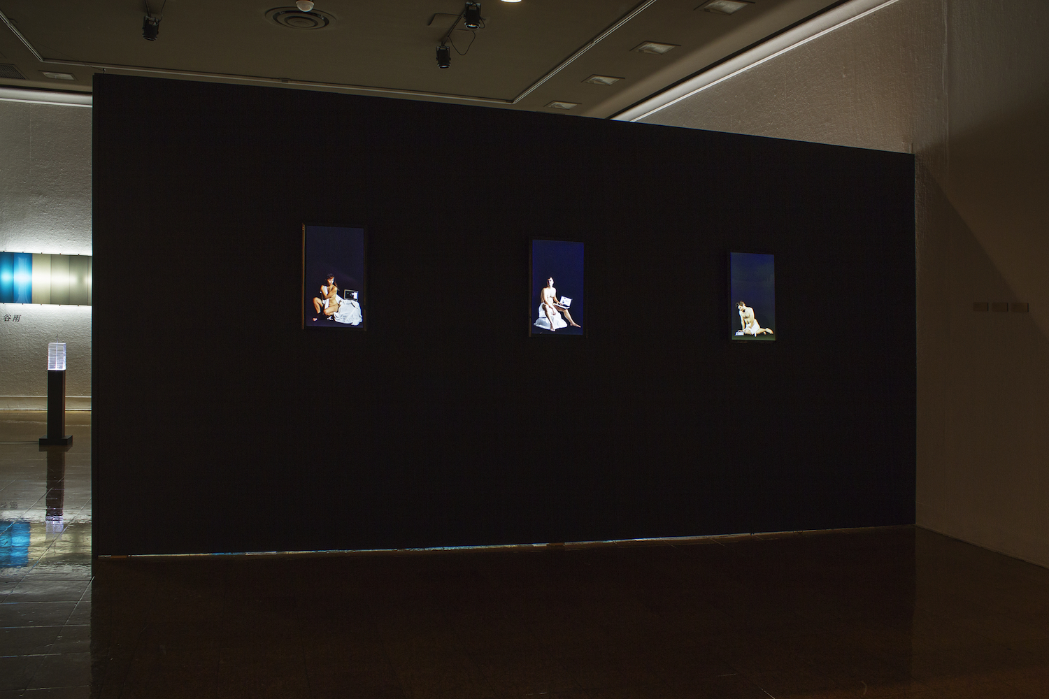 View of selected video portraits.