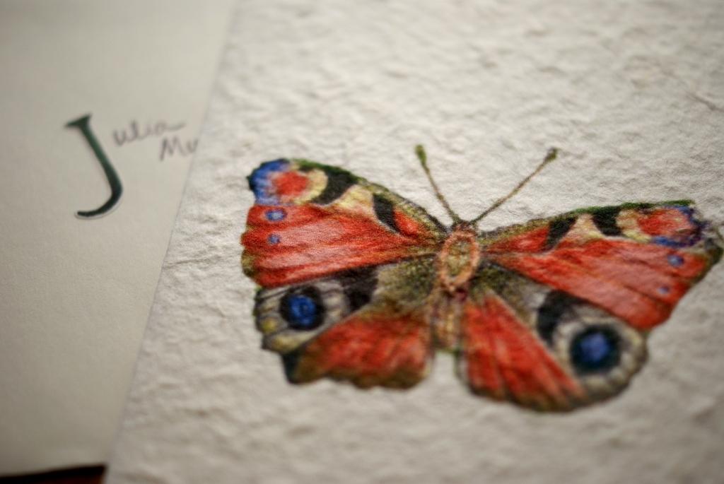 Julia's butterfly