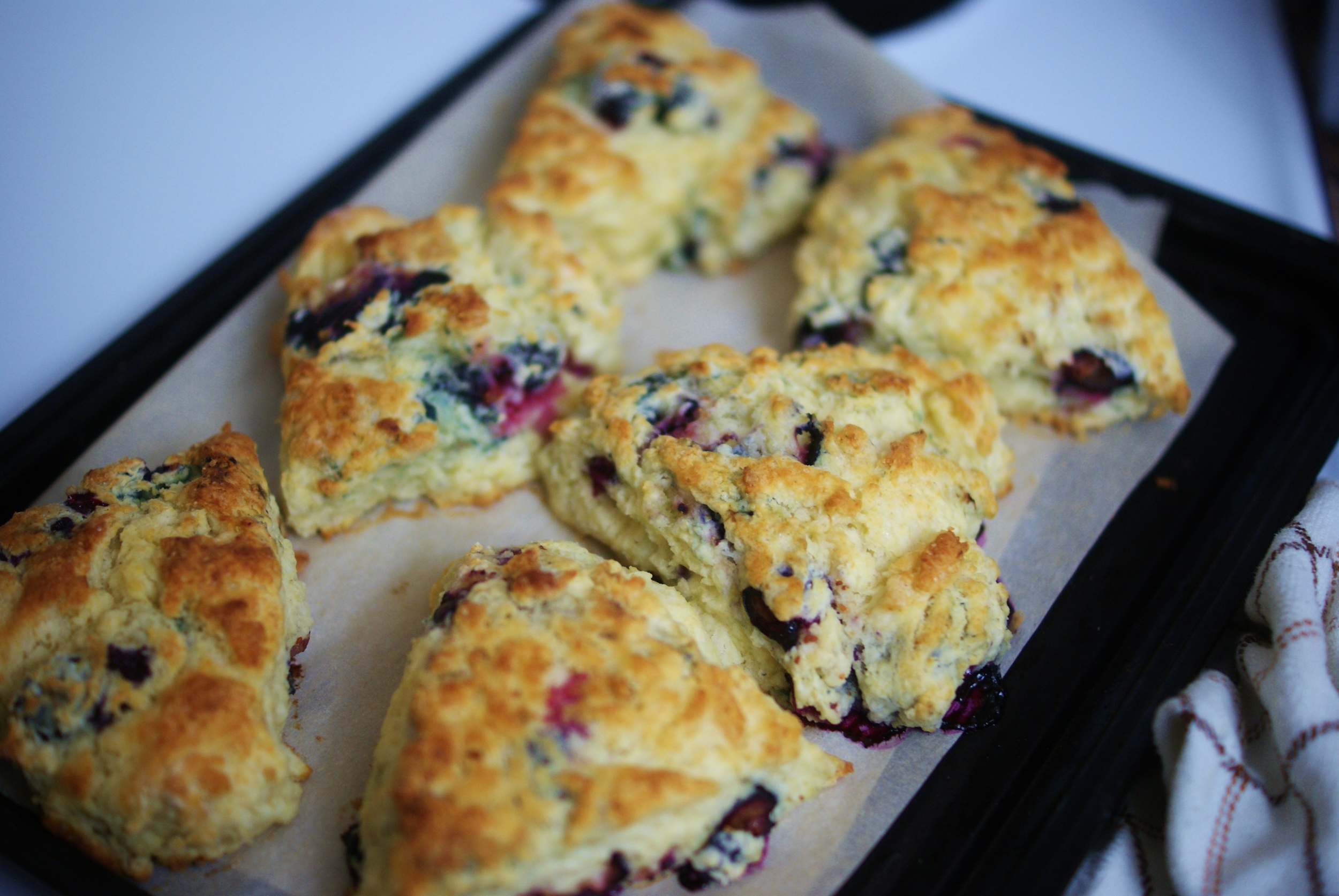 Blackberry scones, my personal faves and (in my opinion) the best ones for your first try.