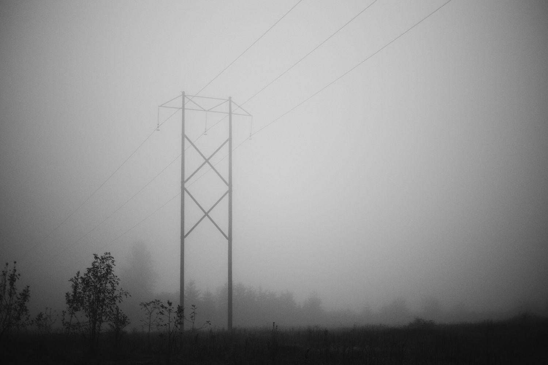 2013-10-03-Foggy Morning-079.jpg
