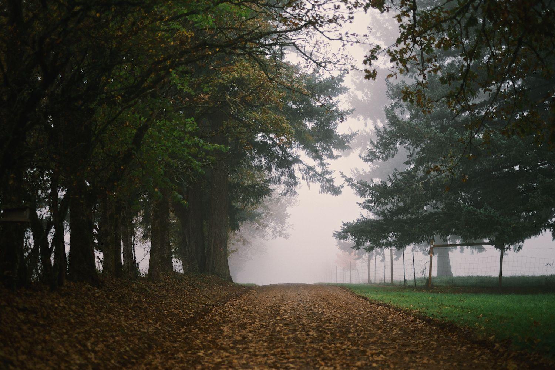 2013-10-17-Bunker Hill Nature-002.jpg
