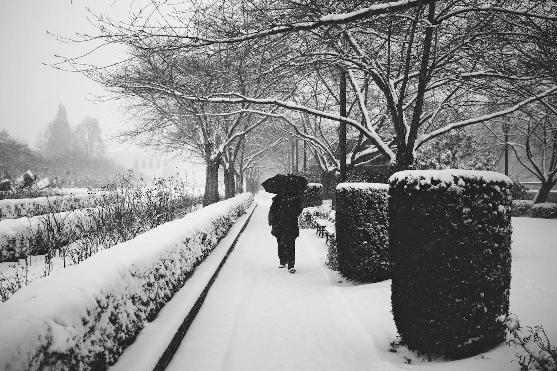 2014-02-07-Snow Storm-001.jpg