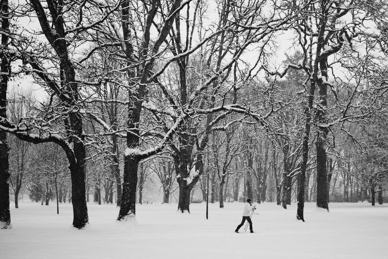 2014-02-07-Snow Storm-027.jpg