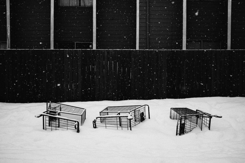 2014-02-08-Snow Storm Day 2-076.jpg