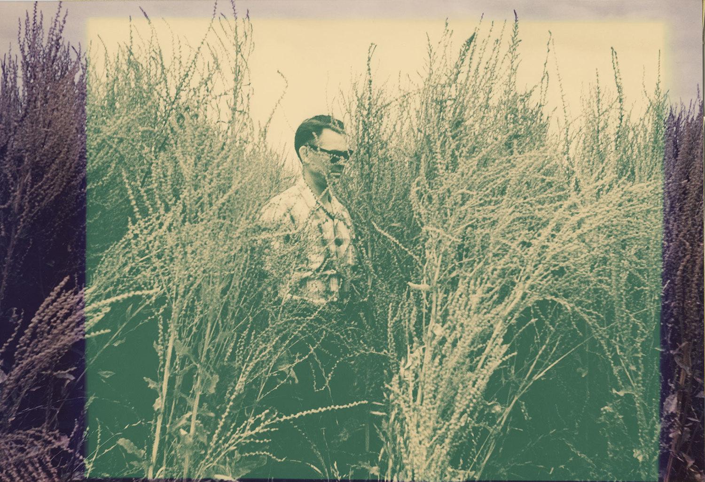 Beet-Photos-20-orig.jpg