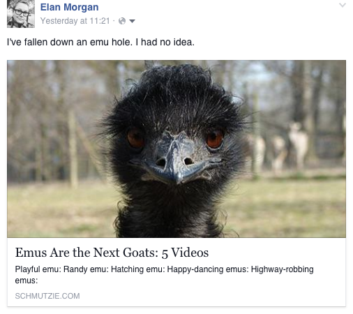 Is Your Facebook Post Missing an Image to Go With That Link