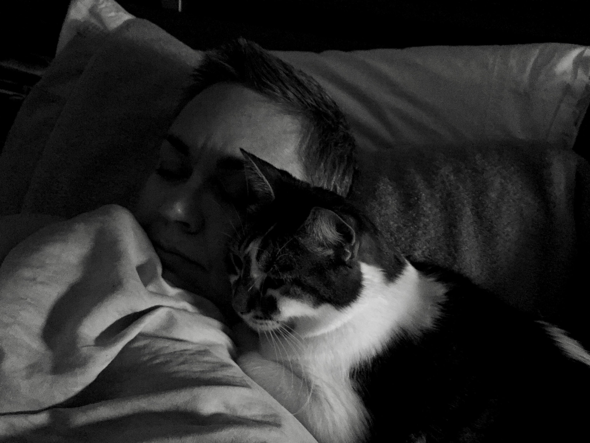 Onion and I in the early hours