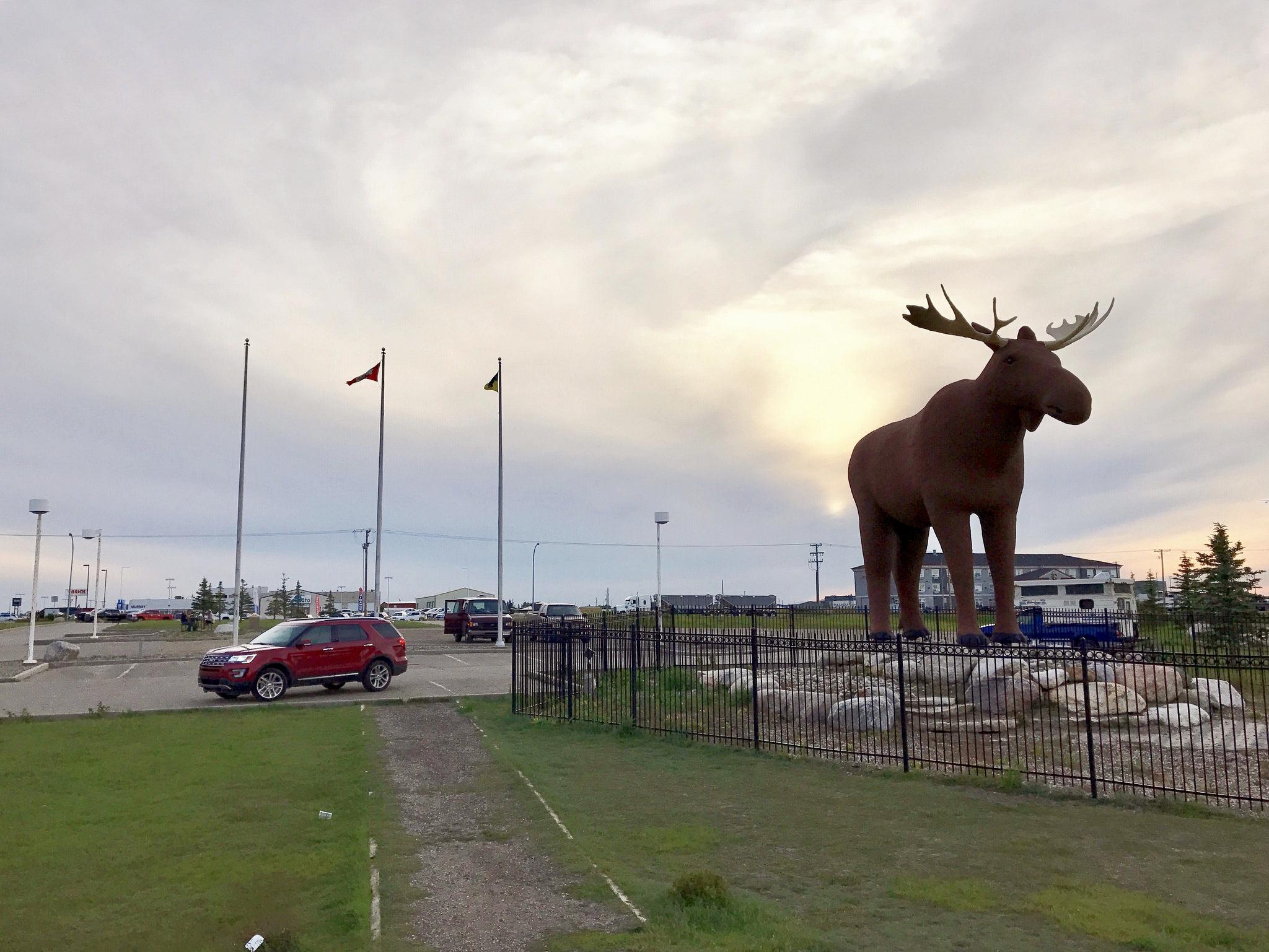Ford Explorer Mac the Moose