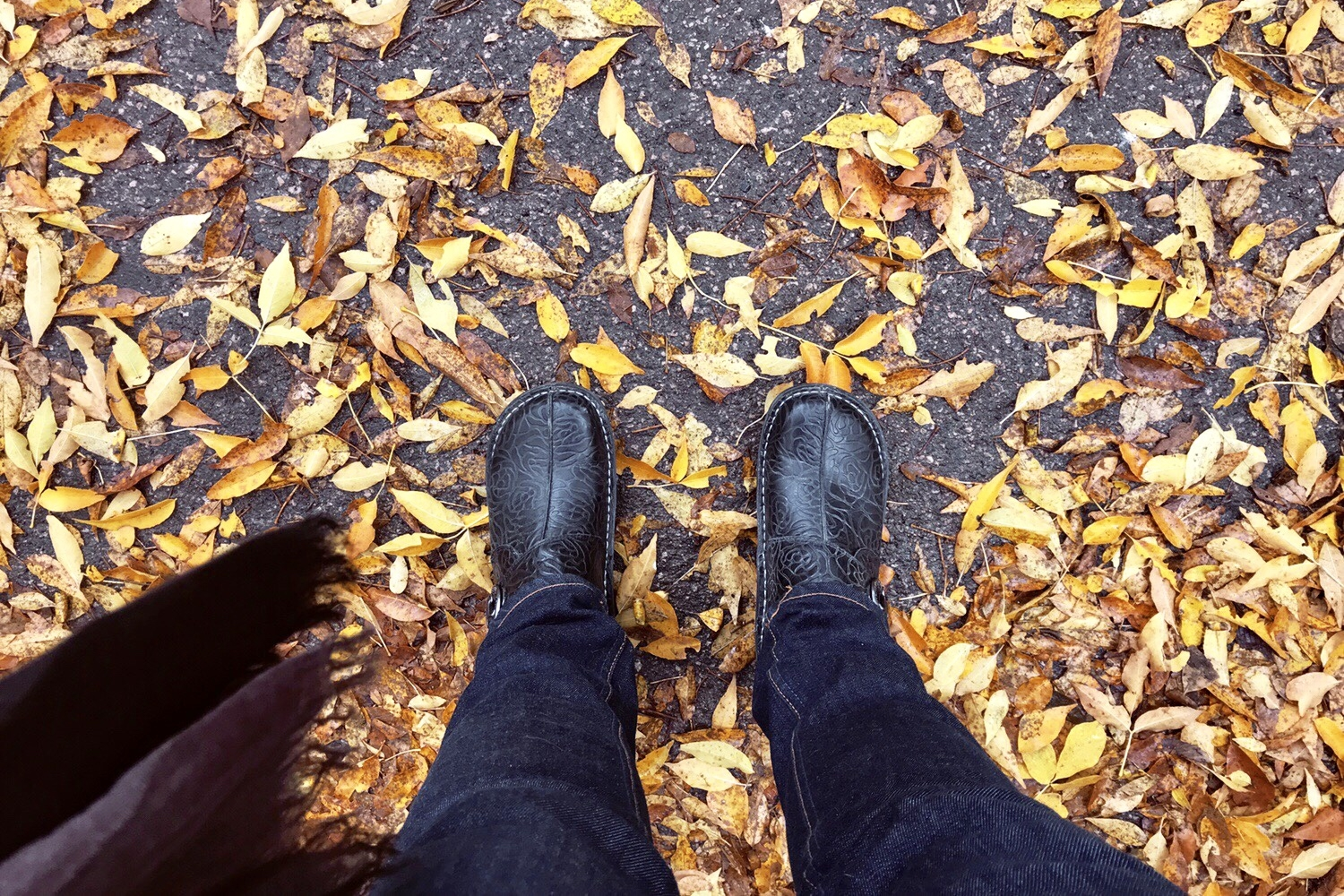 looking down at legs and feet in boots standing on fall leaves on asphalt
