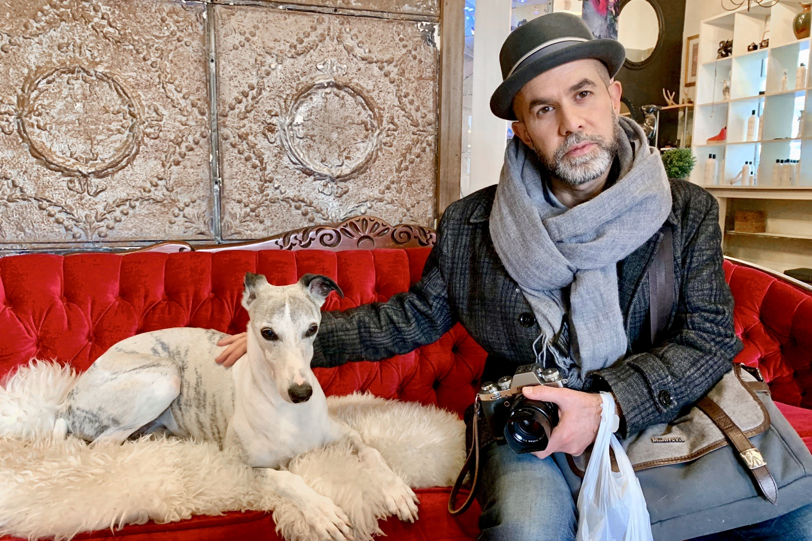 Aidan sitting next to the greyhound Miguel on Seed Shoppe's red velvet sofa