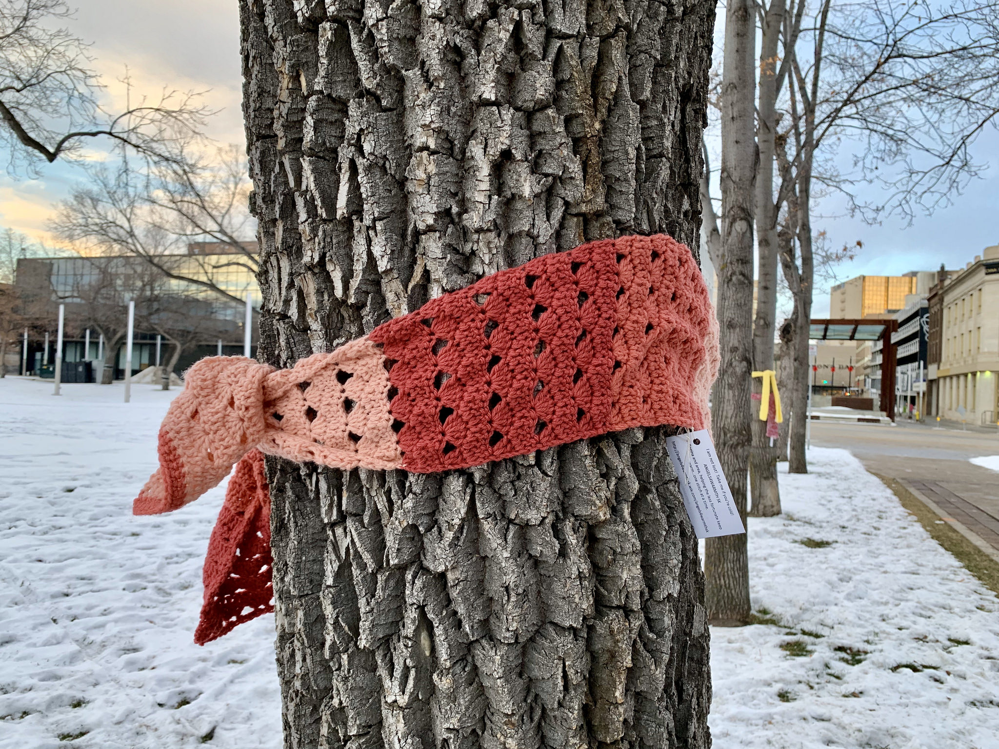 a scarf tied to a tree in a public park with a note attached saying it's free for the taking if you're cold