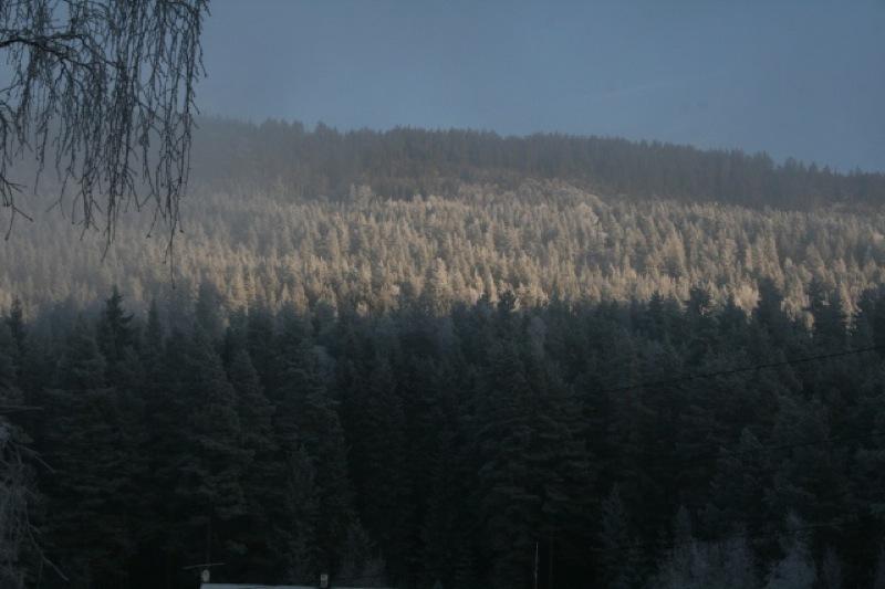 Kald morgen i Åsa