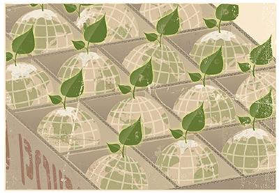 food globes.jpg