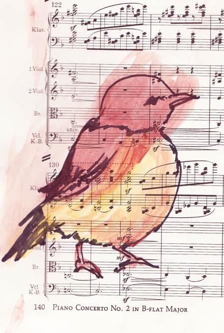 Walden Bird 2 - web.jpg
